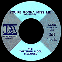 The Thirteenth Floor Elevators
